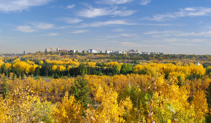 Southwest Edmonton Real Estate